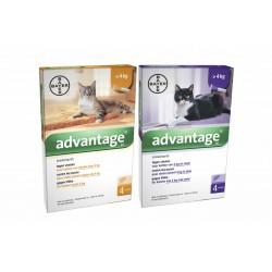 Spot on Advantage 40 pro kočky do 4 kg